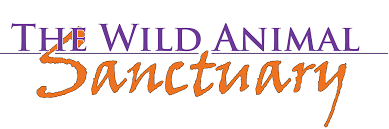 Morning Fresh Farms and The Wild Animal Sanctuary
